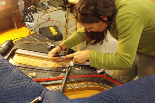 shaping new bass bridge